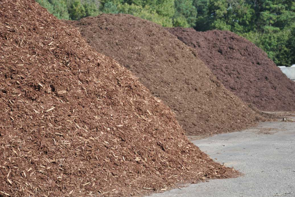 Why Tree Mulch?