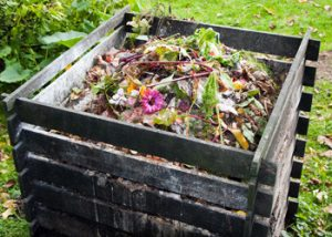 Aussie Tree Solutions Make Compost