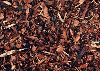 Aussie Tree Solutions Mulch