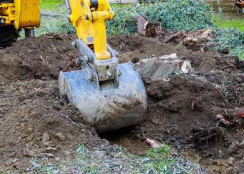 Aussie Tree Solutions Excavation