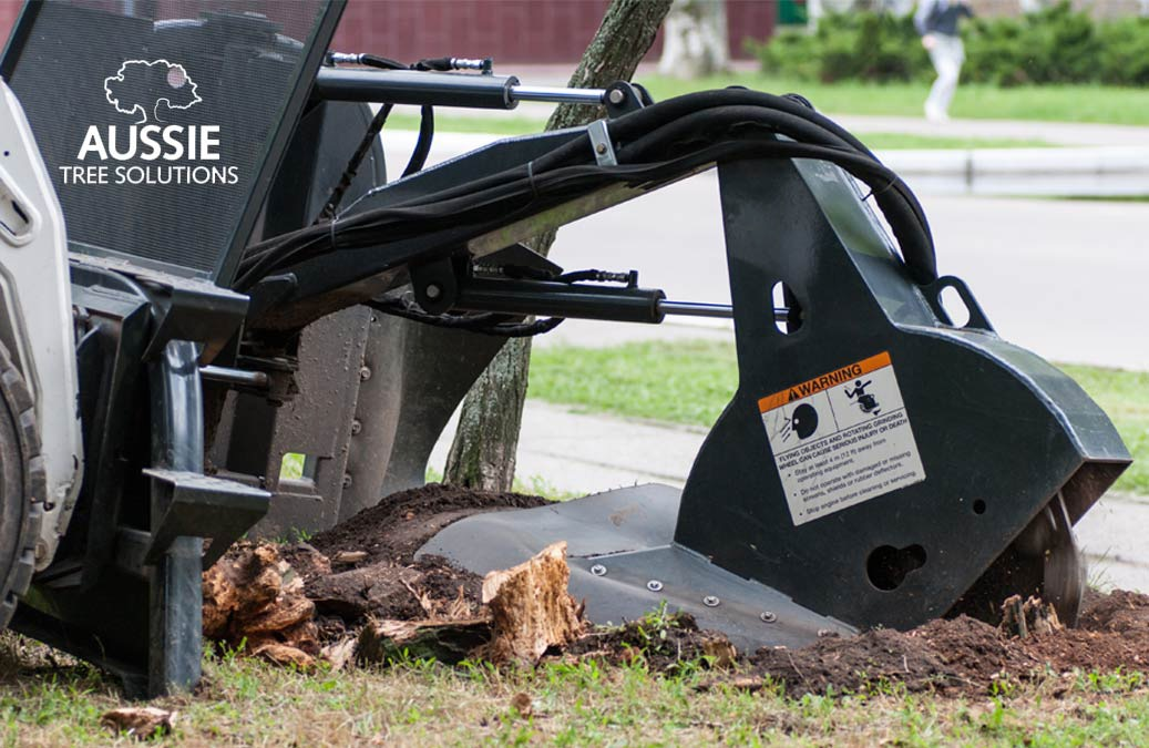Aussie Tree Solutions Stump Grinding Guide