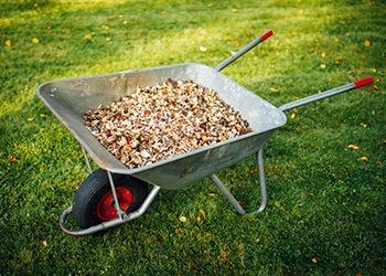 Aussie Tree Solutions Mulch Effectively