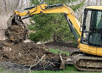 Aussie Tree Solutions Stump Removal